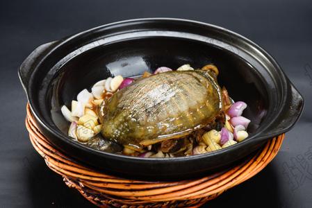 砂锅甲鱼 - 找菜图